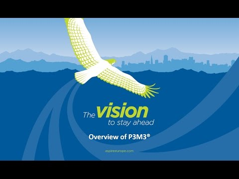 Overview of P3M3®