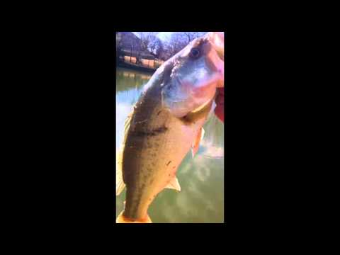 Winter bass pond fishing