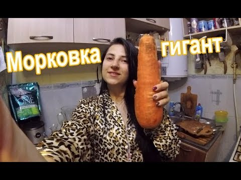 Попросила мужа купить 1 кг морковки )))