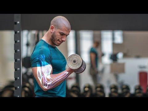 Le yogi tchetyrekhglavaya le muscle
