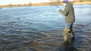 Ловля в москве на москва реке