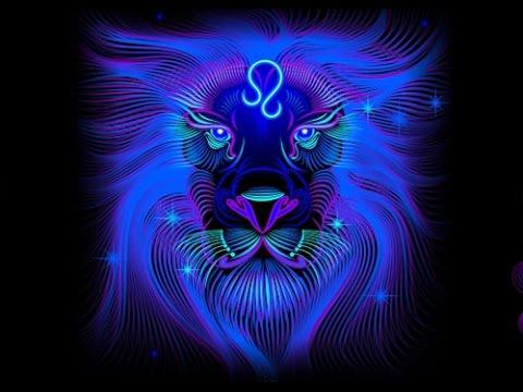 Совместимость по гороскопу мужчина кот женщина обезьяна