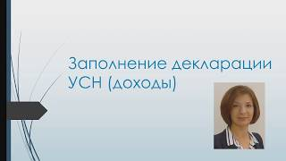 Заполнение декларации УСН доходы для ИП пошаговая инструкция