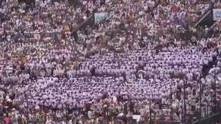 角館 タイガーラグ 26夏甲子園