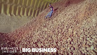 Potato farmers in Idaho and Montana are destroying millions of potatoes. Restaurant closures because of the COVID-19 pandemic caused a glut, and now, billions of pounds of potatoes are stuck in the supply chain. It's caused unprecedented financial losses, food waste, and emotional turmoil for farmers whose livelihood depends on their crops.  MORE BIG BUSINESS: Why 1 Million Pigs A Week Could Have Been Euthanized Even During A Meat Shortage | Big Business https://www.youtube.com/watch?v=sZqgy1QGfGs&t=1s How Restaurants Make 800,000 Meals (And Counting) For Frontline Workers | Big Business  https://www.youtube.com/watch?v=0dU5lWhonyQ&t=76s How The World's Largest Cruise Ship Makes 30,000 Meals Every Day https://www.youtube.com/watch?v=R2vXbFp5C9o&t=13s  ------------------------------------------------------