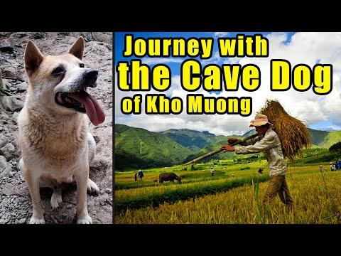 Exploring a MASSIVE Bat Cave in a Thai Ethnic Village in VIETNAM!