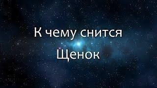 К чему снятся Щенки видео -К чему снится Щенок (Сонник, Толкование снов)