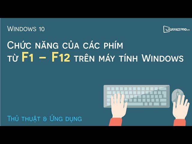 Chức năng của các phím từ F1 - F12 trên máy tính Windows