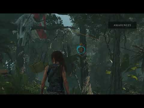 Tobii Eye Tracking de Shadow of the Tomb Raider