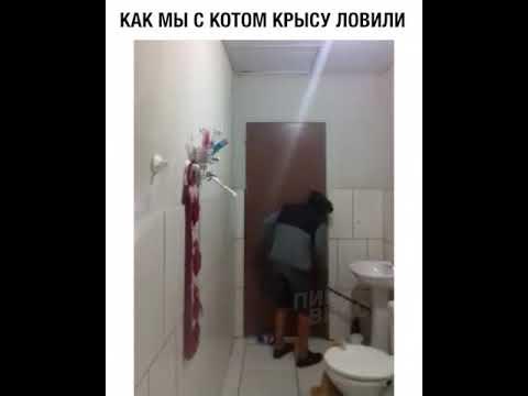 pierdutinlumeamea's Video 158208915464 AMO_AltbCzU