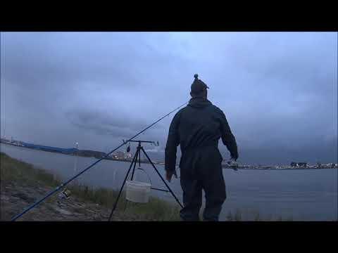 Op Tong vissen in de Botlek(Video)