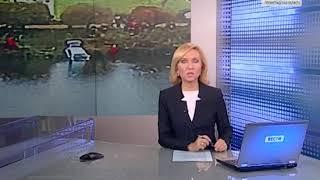 В парке Интернационалистов иномарка утонула в пруду
