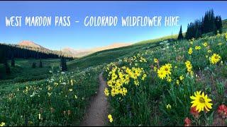 Colorado Peak Wildflower Season - Crested Butte