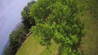 Drone / fpv / freestyle / gopro session5 / 지나가다 한팩!~