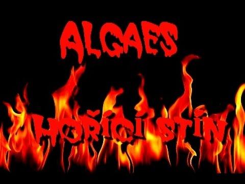 Algaes - Algaes - Hořící stín