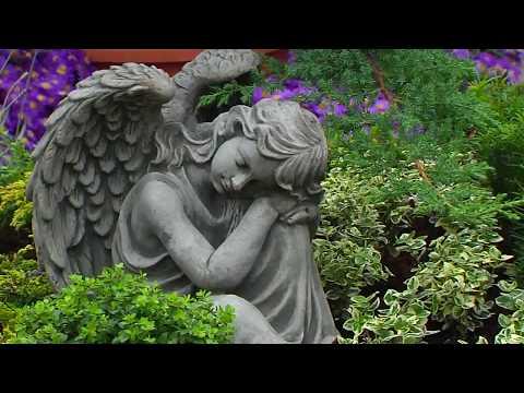 Grabstelle pflegeleicht gestalten – Der Blatt und Blüte Tipp aus der Gartenwelt Dauchenbeck