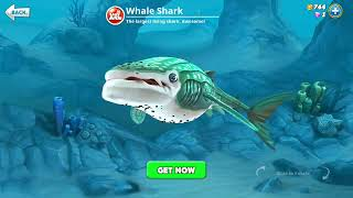 hungry shark world, whale shark (3D Motion)