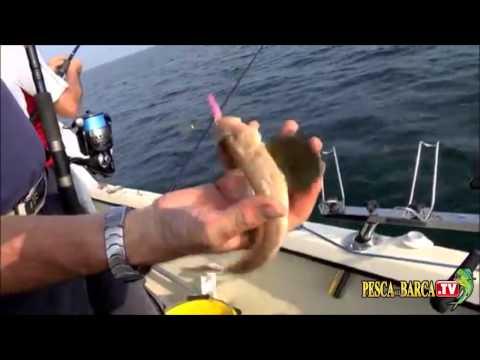 La pesca su video paliya
