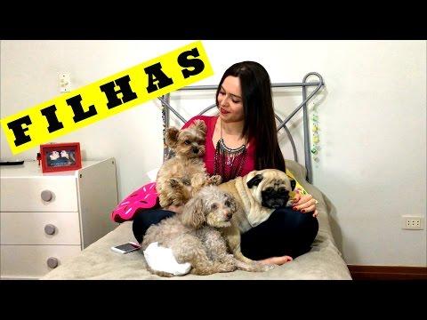 TAG MEU ANIMAL DE ESTIMAÇÃO | Lili Chiurco
