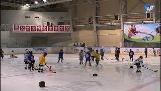 Наша область присоединится к двум всероссийским мероприятиям по зимним видам спорта
