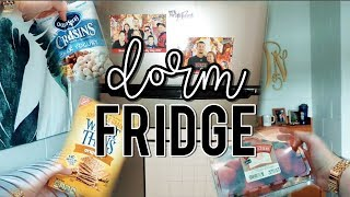 Whats In My College Dorm Mini-Fridge?