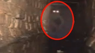 5 Mysterious Creatures Caught On Camera & Spotted In Real Life!