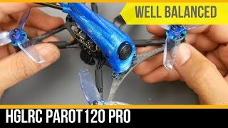 Very Well Balanced Micro FPV Drone // HGLRC Parrot120 Pro 120mm