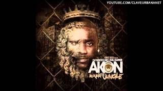 Akon Ft. Fabolous J Money -- Salute 100 Yall (Konkrete Jungle) (2012)