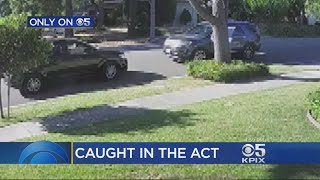 Arriving Homeowner Foils Porch Thieves In San Jose
