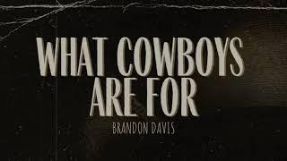 Brandon Davis What Cowboys Are For