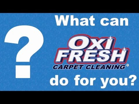 Oxi Fresh Carpet Cleaning 15425 Manchester Rd Ballwin Mo