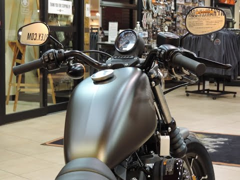 2021 Harley-Davidson HD Sportster XL883N Iron