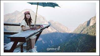 Enjoy the cold of Chiang Rai's mountain view points (Doi Tung & Doi Pha Hee)