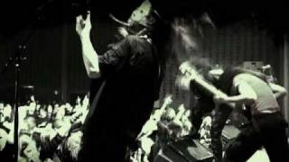 Aborted- A Cold Logistic Slaughter