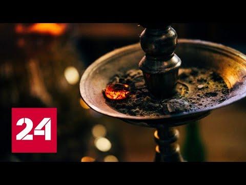 В силу вступил закон, запрещающий курение кальяна в кафе и ресторанах - Россия 24