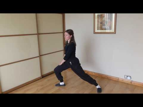 Lee Style Online Tai Chi Class 1