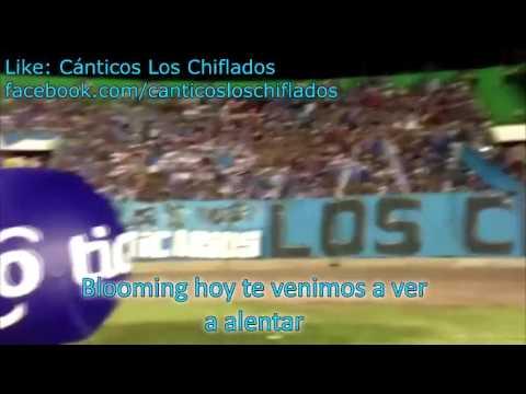 """""""Soy de la Academia si señor!"""" Barra: Los Chiflados • Club: Blooming"""