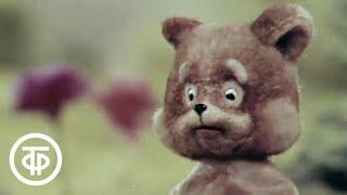 Топчумба (1980)