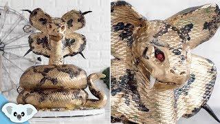 St. Patrick Day Golden Snake   Animal Cake Art   Koalipops