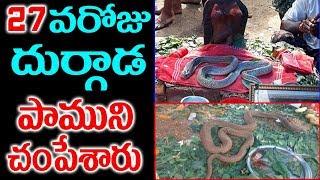 26 రోజులు పూజలందుకున్న పాముని చంపేసారు| Durgada Subramanyeswara god Snake story | Sumantv