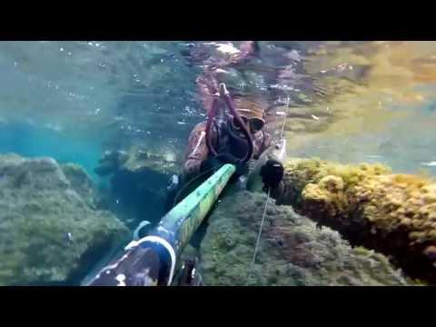 Il cercatore di profondità sonico un galleggiante per pesca invernale