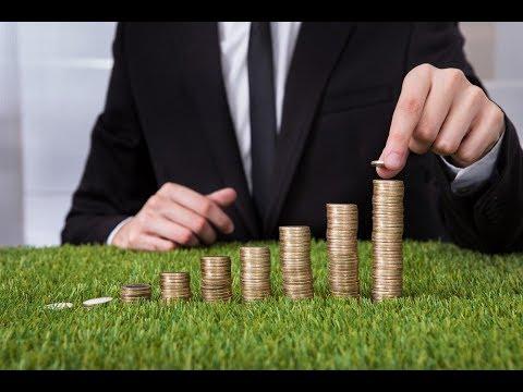 Как выбрать систему налогообложения для малого бизнеса (ООО и ИП)