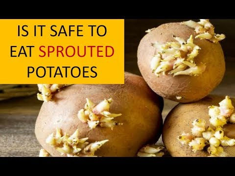 , title : 'IS IT SAFE TO EAT A SPROUTED POTATO?