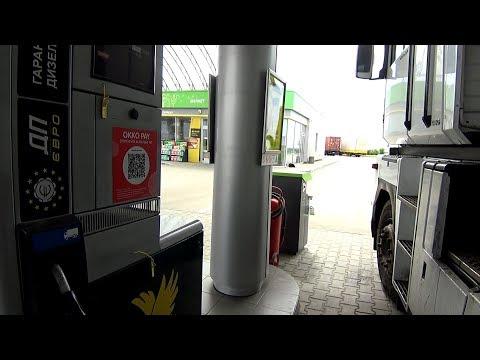 Fuel shark ekonomitel des Benzins die Rezensionen