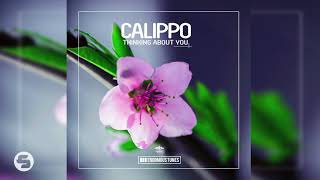 Calippo   Thinking About You