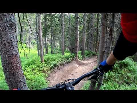 Bikepark Leogang 2020 Matzalm Trail