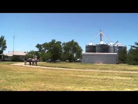 Families Growing Wheat