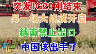 G20刚结束另一场大战就开启,越南禁止出口 ,中国该出手了 !