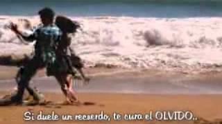 Hemicraneal-Estopa (Estilo Disney Con Letra)