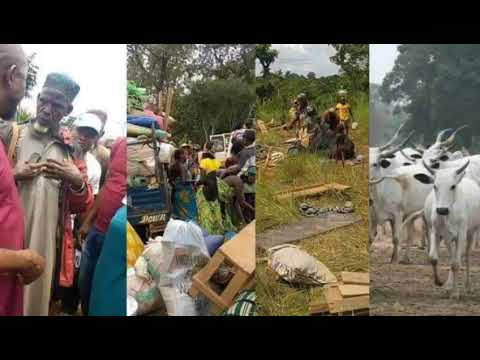 JUST IN: RUGA COMMENCES IN EBONYI FULANI HERDSMEN ARRIVE WITH FAMILIES, PROPERTIES.